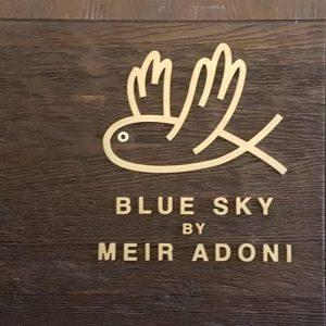 שלט לוגו